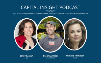 Episode 7: Key CrowdFunding Lessons For Social Entrepreneurs With Brahm Ahmadi
