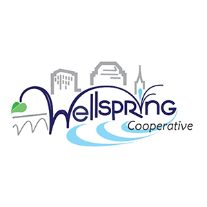 Wellspring Investment Group